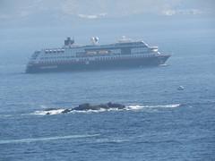 153 (jesust793) Tags: barcos ships mar sea viaje