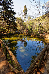 A small artificial pond, Mt. Ymittos, Athens, Greece (George Fournaris) Tags: trees pond ymittos mountain greece reflection