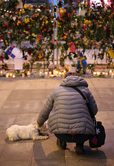 (Christine H.C. Valenzuela) Tags: stockholm sweden sverige terror attack people community united grieving tragedy 2017 peace terrorism love unity swedish svenska svenskar dog flowers europe life