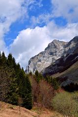 Awakening (ema_leo) Tags: alpiapuane focedelmosceta mountain spring brown d90 tuscany italy