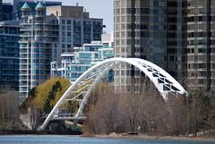 Toronto (Marcanadian) Tags: toronto ontario canada building spring architecture 2017 humber bay shores lake skyline bridge