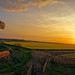 Into the setting sun (Norfolk & Beyond) Tags: tunstall tunstalldyke sunset norfolkf rural sign footpath countryside evening dusk