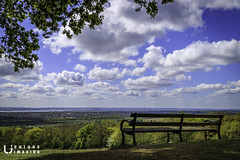 Bench with a view (mark surry) Tags: one tree hill thurrock view bench clouds trees