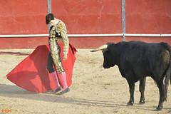 Toros - Ismael Jiménez (Antonio Miguel Sánchez Romero) Tags: toros plazadetoros ismaeljiménez tauromaquia torero