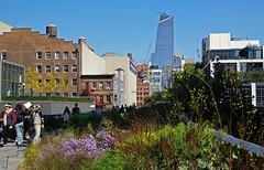 High Line, NYC (SomePhotosTakenByMe) Tags: hudsonyards highline park midtown uptown nyc newyorkcity newyork manhattan usa urlaub vacation holiday stadt city innenstadt america amerika outdoor gebäude building chelsea architektur architecture wolkenkratzer skyscraper