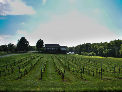 Hartwood Winery