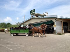 Amish Country Day Trip (rbatina) Tags: county ohio 21 country 21st may amish oh holmes rubbertoe 2013 uploaded:by=flickrmobile flickriosapp:filter=nofilter