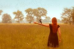 21/52 farewell (Gret B.) Tags: red woman selfportrait bird girl self fly dream poetic farewell 20 redhair selbstportrait abschied vogel 52 krhe selbstportrt 2052 52weeks wegfliegen rckenansicht dohle 52weeksproject 52wochen 52wochenprojekt