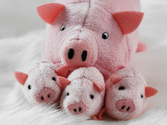 Family Snap (Fear_Through_The_Eyes) Tags: family macro closeup toys pig piglet