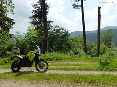 an einem Abzweig im Wald (tuxbrother) Tags: forest germany motorbike bmw motorcycle wald schwarzwald blackforest deu motorrad waldweg forbach badenwrttemberg foresttrail f800gs