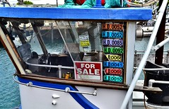"there are a lot of boats named ""for sale"" (Lenny Lloyd da Silva) Tags: boats harbor fishing fisherman pacific ships working pacificocean socal commercial fishingboats oceanview sanpedro workingboats seiners purseseiners commercialfishingboats coastlineboats"