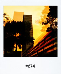 "#DailyPolaroid of 20-6-13 #274 • <a style=""font-size:0.8em;"" href=""http://www.flickr.com/photos/47939785@N05/9166289328/"" target=""_blank"">View on Flickr</a>"