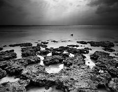 farasan 12 (Abdullah AlGarzai) Tags: bw white black film contrast landscape island high rocks large delta iso 4x5 format 100 ilford inches rodenstock farasan seascpae chamonic