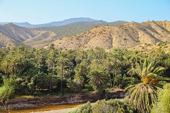 Heaven on Earth. (SHKR | ShakerMedia) Tags: trees mist holiday mountains nature water beautiful beauty clouds plane stars star paradise natural lakes mother palm morocco springs valley streams moroccon