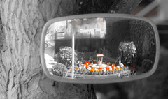 Faded rearview mirror on tree (Nils Croes) Tags: old red orange reflection art canon vintage 50mm mirror rearviewmirror retro reflected faded rearview hazy 60d