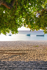 Mauritius - looking through the leaves 3 (Romeodesign) Tags: ocean sunset sea tree beach leaves boats island boat leaf maurice indianocean ile shore tropical mauritius trouauxbiches 550d