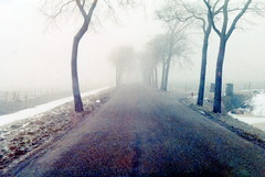 winter in holland (5) (bertknot) Tags: winter winterinholland