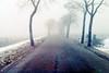 winter in holland (5) (bertknot) Tags: winter winterinholland
