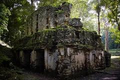 Yaxchilan - Construccin (Uriel Akira) Tags: rock stone mexico ruins selva jungle ruinas chiapas mayas roca piedra yaxchilan mayans