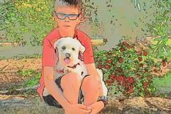 DSC_0132 (Pedro Montesinos Nieto) Tags: dog nios perro dibujos fragile mascotas ageofinnocence inseparables laedaddelainocencia frgiles nikond7100