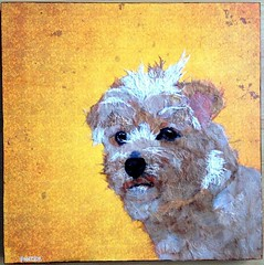 Torn Paper Dog - Willow (all things paper) Tags: petportrait chigirie tornpaper