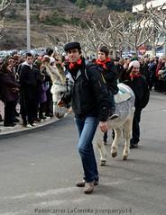 DSC_0856 (Pep Companyo - Barral) Tags: barcelona de la catalunya festa 19 corrida mati festes 2014 bergueda josep gener tradicionals populars puigreig esmorar companyo barralo pasacarrers