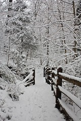 "Footbridge in snow • <a style=""font-size:0.8em;"" href=""http://www.flickr.com/photos/92887964@N02/12108712296/"" target=""_blank"">View on Flickr</a>"