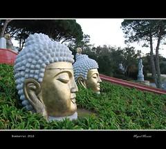 Jardim Buddha Eden #12 (miguel m2010) Tags: portugal buddha jardim eden bombarral mygearandme mygearandmepremium