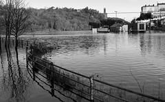 The innundation of Bristol (paulchapmanphotos) Tags: leica water 35mm bristol flood f14 february avon summilux floatingharbour m9p