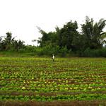 Thai_river_kwai2 (9) thumbnail