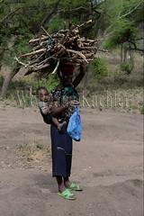 10071662 (wolfgangkaehler) Tags: africa people woman tanzania person african firewood carrying lakemanyara eastafrica eastafrican tanzanian environmentalimpact tanzaniaafrica environmentalissue lakemanyaratanzania environmentalconcern {vision}:{outdoor}=099