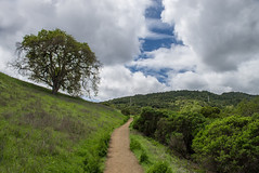 Trail to a Hole in the Clouds (Chris DeNamur) Tags: california blue sky green clouds spring unitedstates hike trail cupertino ranchosanantonio
