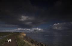A lighthouse, a dramatic sky, a dike and a little dog. (Marijke M2011) Tags: dramaticsky lighthouse dike water heavyclouds dog footpath island marken outdoors tourism