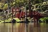 Parc Oriental de Maulévrier, France (Tiphaine Rolland) Tags: parc park parcorientaldemaulévrier maulévrier japonais japanese japanesegarden jardinjaponais jardin garden france にわ 庭 green vert 緑 みどり 水 みず water eau pont bridge red rouge 赤い あかい