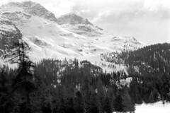 04a3371 27 (ndpa / s. lundeen, archivist) Tags: nick dewolf nickdewolf bw blackwhite photographbynickdewolf film monochrome blackandwhite april 1971 1970s 35mm europe centraleurope switzerland swiss alpine alps graubünden grisons stmoritz easternswitzerland suisse schweitz mountains peaks snow snowy snowcovered skiresort skiarea skislopes landscape trees swissalps