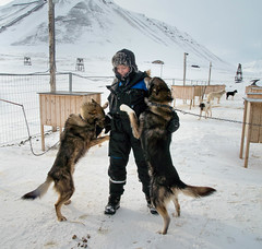 R0119698 (Micke Jonasson) Tags: svalbard spitzbergen dog sledge