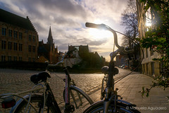 #bicicletas #bicis #bikes #contraluz #backlighting#2016 #brujas #brugge #bruges #bélgica #belgium #ciudad #city #viajar #travel #viaje #trip #paisaje #landscape #sol #sun #photography #photographer #picoftheday #sonystas #sonyimages #sonyalpha #sonyalpha3 (Manuela Aguadero) Tags: landscape trip brujas bicicletas sol city sonystas 2016 bicis sonya350 sonyimages ciudad brugge bikes bélgica viajar sun picoftheday belgium backlighting photography sonyalpha sonyalpha350 contraluz paisaje photographer alpha350 bruges viaje travel