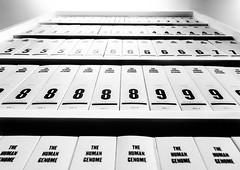 The Human Genome (DobingDesign) Tags: wellcometrustlibrary london bookcase perspective vanishingpoint abstract books data facts medicine medical knowledge blackandwhite contrast text numbers academictexts wellcomecollection