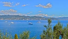 """Skyline In Portofino"" (giannipaoloziliani) Tags: yacht portofino skyline sky landscape colors nikond3200 nikon view boats mare sea"