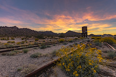 Colorful Sky at Sunset and Wildflowers at Dos Cabezas Siding (slworking2) Tags: railroad sdae spreckels sandiego anzaborrego anzaborregodesertstatepark trail abandoned siding impossiblerailroad california desert decay trains sunset sky colorful