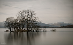 Loch Lomond (debraduncan1960) Tags: trees loch lomond calm day water