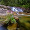 Lansir Water Fall (Azam Alwi) Tags: cbl fujifilmxt1 fujifilm slowshutter semulajadi longexposure raymaster touit2812 terengganu chemerongberembunlangsir landscape
