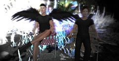 Fashion and Phishing Fables (Niki Wirefly) Tags: fae fairy fairey faerie male fantasy landscape dark gay colour couple secondlife men lufian wings niki love sl people