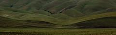 Livermore Hills, CA (JimBab) Tags: hills livermore ca california spring