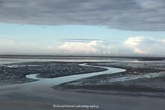 het wad (dewollewei) Tags: wad waddeneilanden wadden waddenzee sea netherlands nederland eb tij amelans ameland