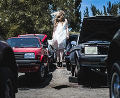 Levitate (_mattdalton_) Tags: junkyard levitate volkswagen volvo
