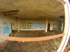 arr (Based Dan) Tags: graffitti buffalo ny train terminal abandoned explore exploration tags throws supreme palace art