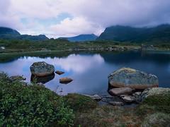 Stones in the water (JaZ99wro) Tags: e100g e6 f0325 mamiya645protl norway norwegia opticfilm120 tetenal3bathkit analog exif4film film lake