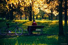 Man at the park (joe petruz) Tags: park sunset light outdoor man sit field sun set relax torino piemonte read music canon eos 650d zoom spring green yellow red garden run