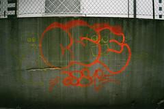 Cervignano (Tankcontrastless) Tags: cervignano udine urbex graffiti water river flower vsco sony alpha a7 mirrorless 28mm fe zeiss